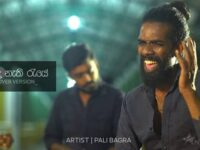 Ninda Nathi Raye Cover Pali Bagra Mp3 Song Download